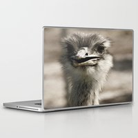 ostrich Laptop & iPad Skins featuring Ostrich by Raymond Earley