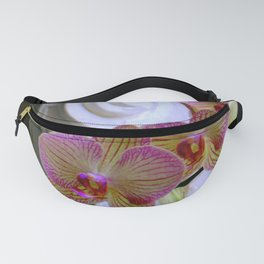 An Order Of Corinthian For Here Fanny Pack