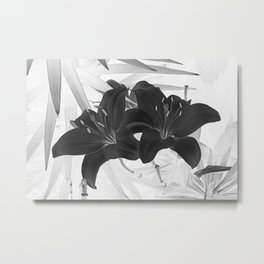 Contemporary Black Lily Flower Floral Art A116 Metal Print