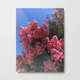 Texas Flowers Metal Print
