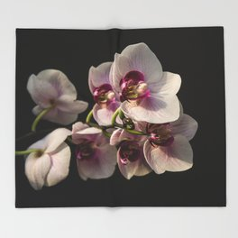 Orchid Branch Throw Blanket
