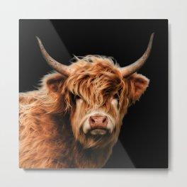 Highland Cow Metal Print