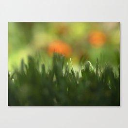 Fuzzy Landscape Canvas Print