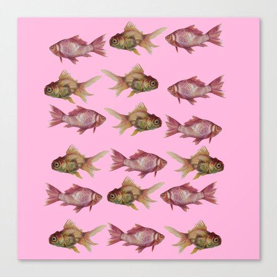 fish pink  Canvas Print