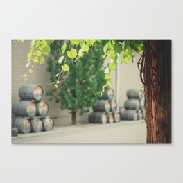 In the Winery Canvas Print
