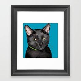 Black Cat Portrait Framed Art Print