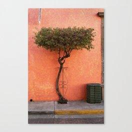 Tlaquepaque, Jalisco Canvas Print