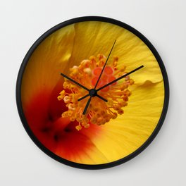 Hibiscus macro Wall Clock