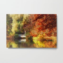 Autumn 20 Metal Print