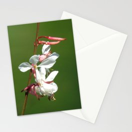 Beeblossom in bloom Stationery Cards