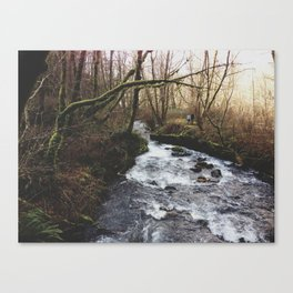 Couple Walking By Stream Canvas Print