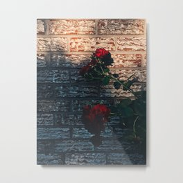 Roses and Walls Metal Print