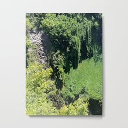 Rainforest From Above Metal Print