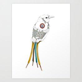 Bired Art Print