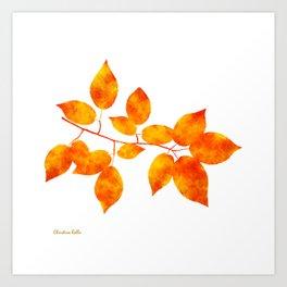 Orange Leaf Art Art Print
