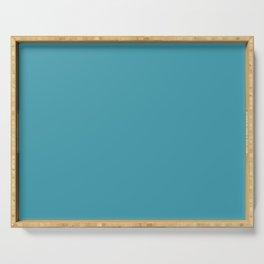 Blue Lagoon Solid Matte Colour Blocks Serving Tray