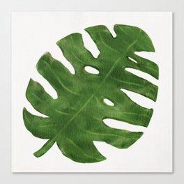Monstera Leaf Canvas Print