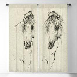 Arabian horse portrait Blackout Curtain