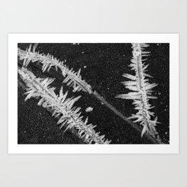 Icy Days NO2 Art Print