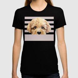 Toy poodle Dog illustration original painting print T-shirt