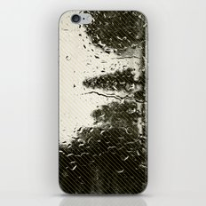 trees in lines iPhone & iPod Skin