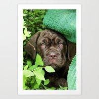 Neo Mastiff Art Print