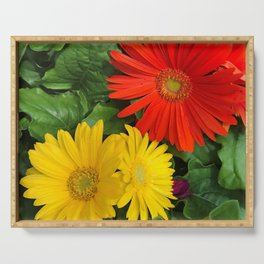 Colorful Daisies Serving Tray