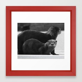 Total Cuteness Framed Art Print