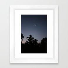 Palm night Framed Art Print