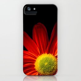 Chrysantheme iPhone Case