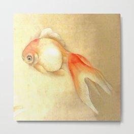 Japanese Goldfish Metal Print