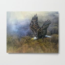 Bald Eagle Country Metal Print