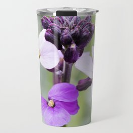 Dame's Rocket, Wild Phlox Travel Mug