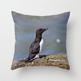Razorbill Throw Pillow