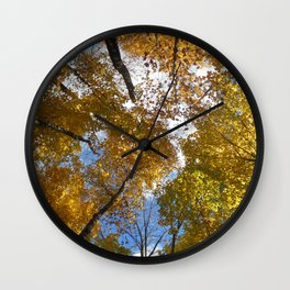 Acer Saccharum Wall Clock