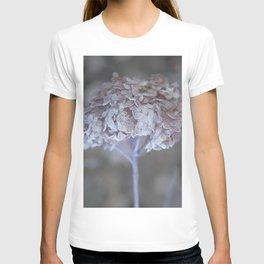 Frost Petals Of Hydrangea #decor buyart #society6 T-shirt