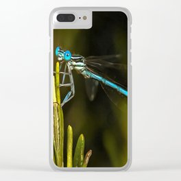 Common Blue Damselfly Clear iPhone Case