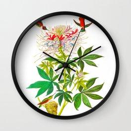 Ruff-Necked Hummingbird Wall Clock