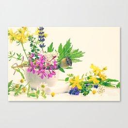 #wild #herbs #still #life, #design from #nature Canvas Print