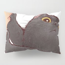 cat : huuh Pillow Sham