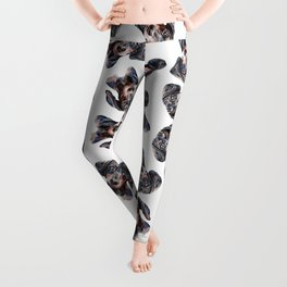 101 Dachshunds Leggings