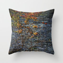 Vines on a Brick Wall (Color) Throw Pillow