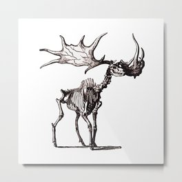 Irish Elk Skeleton Metal Print