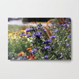 Vibrant Purple Flowers Metal Print