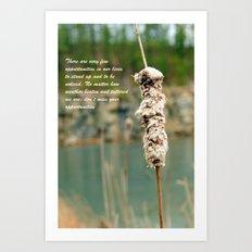 Inspiration of a cattail Art Print