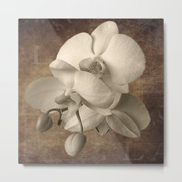 Vintage Flowers Digital Collage  2 Metal Print