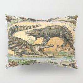 Adolphe Millot - Nouveau Larousse Illustré - Reptiles (1906) Pillow Sham