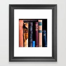 Vintage Books Framed Art Print