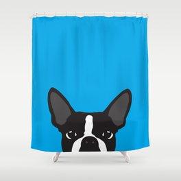 Boston Terrier Blue Shower Curtain