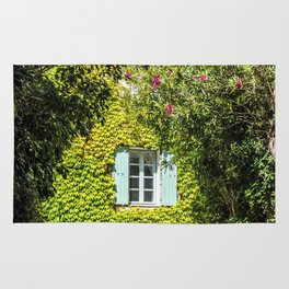 Old typical house in Provence in summer Rug